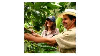 $155 mil millones entregará el Gobierno nacional para apoyar al sector cafetero.